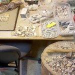 Laboratorio_banchetto mosaicista